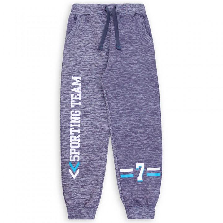 Спортивные штаны для мальчиков (арт.1001926/1)