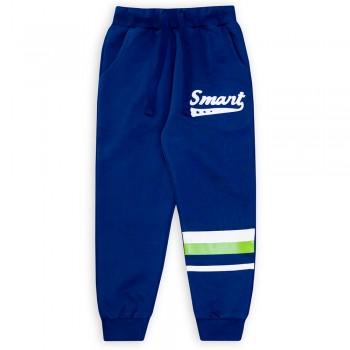 Спортивные штаны для мальчиков (арт.1001926/2)